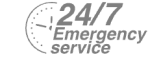 24/7 Emergency Service Pest Control in Sydenham, SE26. Call Now! 020 8166 9746